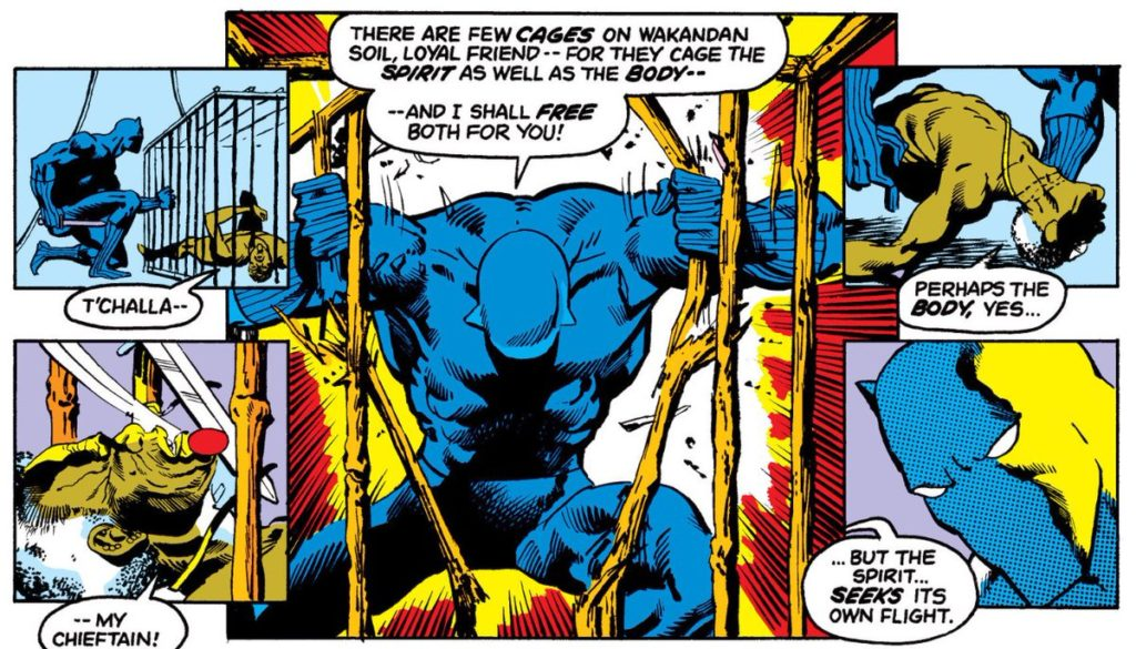 Black Panther in Panther's Rage